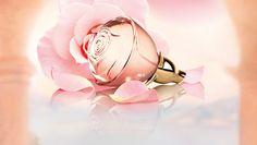 Parfumuri | Oriflame Cosmetics