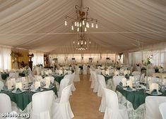 Decoração casamento verde musgo com branco