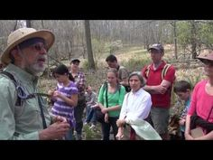 How To Forage In Your Local Park: Foraging With Wildman Steve Brill in Brooklyn - YouTube