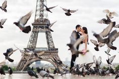 We promise there was not a single bird hurt in the creation of this Paris…