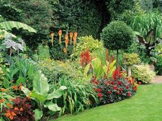 The garden experts at HGTV.com help you get the most out of your landscape.