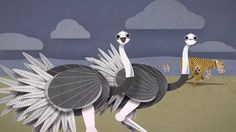 One more new animation done for Woodland Park Zoo in 2014. Communication Arts Award of Excellence 2014 (Animation Series)