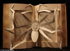 Arachnophobia: This piece is carved into a book called the 'The Life of a Spider' which has an inscription saying it was given as a Christmas present in 1931
