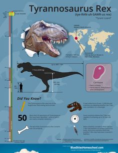 Tyrannosaurus Rex Dinosaur Fact Sheet & Infographic #infographic #dinosaur #homeschool #printables