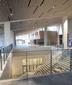 Foyer med trappe - Moesgaard museum, Aarhus  - Henning Larsen architects  - photo: Lærke Munk