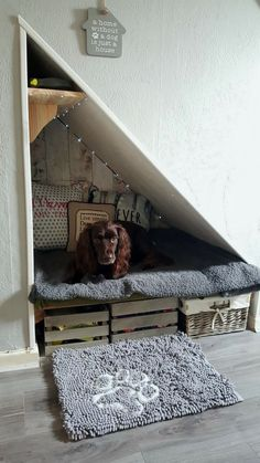 Dog under stairs Dog houses Dog bedroom Dog rooms Bed under stairs Diy dog bed - Creative ways to incorporate pet items into your home decor 4 - Animal Room, Dog Bedroom, Bedroom Decor, Closet Bedroom, Bedroom Wall, Bed Room, Puppy Room, Dog Spaces, Small Spaces