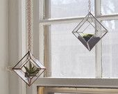 Zephyrus Terrarium, small -- for air plant terrarium or small succulent -- stained glass -- terrarium supplies -- eco friendly