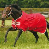 Horseware Ireland Amigo 600D Pony Lite Turnout, Red/Pummice, 4ft9 Waterproof and breathable. 600D Polyester outer. Nylon lined. Classic Horseware cut. Patented front leg arches. (Barcode EAN = 0649982394242). http://www.comparestoreprices.co.uk/horse-products/horseware-ireland-amigo-600d-pony-lite-turnout-red-pummice-4ft9.asp