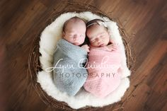 Google Image Result for http://www.lynnquinlivan.com/blog/wp-content/uploads/2012/04/Worcester-Massachusetts-Twin-Newborn-Baby-Boy-and-Girl-In-Nest-Photographer-Image-Pose.jpg