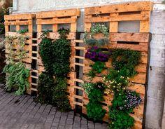 Euro pallet wood DIY ideas of vertical garden