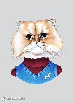 Every time! #cat #kitten #purr #fluffy
