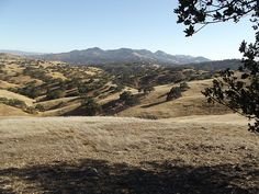 Pacheco State Park, California  When the hills were brown like this we would use large cardboard boxes flattened and slid down the hills! Lots of fun! Glad I didn't know enough to be afraid of the rattle snakes then!!!