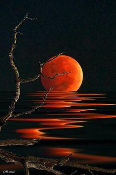 Red Moon Reflections 😍😎😄 Via; - Sue Brimhall Red Moon Reflections 😍😎😄 Via; Moon Painting, Painting & Drawing, Red Moon, Orange Moon, Beautiful Moon, Art Abstrait, Pastel Art, Moon Art, Painting Techniques
