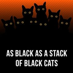Learn English idioms with our: Flashcard app English Tips, English Idioms, English Book, English Study, English Lessons, English Vocabulary, Learn English, Black Cat Meaning, Woodward English