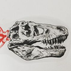 Em breve na pele #skull #t-rex #tattoo