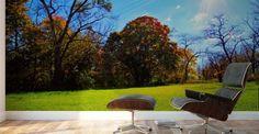 Sunny Fall Day - Don  Baker  - Canvas