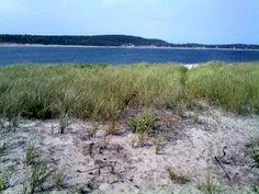 beaches in Maine