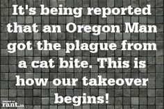 It's being reported that an Oregon Man got the plague from a cat bite. This is how our takeover begins! | A rant by RufustheRantCat on Rant.in