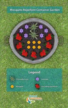 Backyard Gardening Australia - #KitchenGardeningHerbs - #PalletGardeningVegetable - #GardeningLandscapingLighting