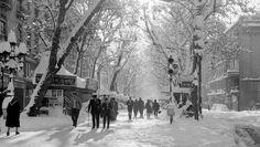 Las ramblas, la catedral y la sagrada familia en la navidad de 1962 - ForoCoches