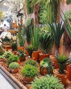 Jardim de plantas permanentes na Gift Fair . #jardim #garden #outdoor #decorlifestyle #lifestyle Gift Fair, Outdoor, Courtyards, Porches, Ariel, Instagram Posts, Flower Decoration, Flower Arrangements, Gardening