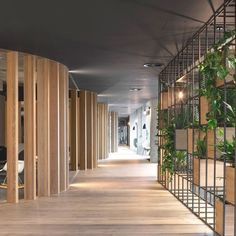 Biophilic design: wood, greenery and natural light in a modern interior. Biophilic design: wood, greenery and natural light in a modern interior. - Add Modern To Your Life Office Space Design, Workplace Design, Office Interior Design, Office Interiors, Office Designs, Design Offices, Office Spaces, Office Ceiling Design, Open Space Office