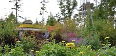 Coastal Maine Botanical Gardens is a premier tourist attraction located on the Boothbay peninsula near Augusta & Portland. CMBG offers boat tours, garden tours & so much more. Visit us today!