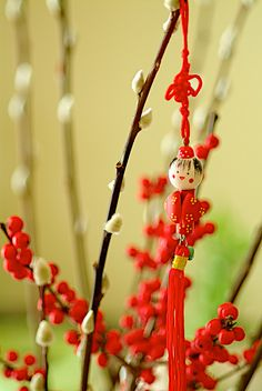 How are you exciting the home for Chinese New Year this year? #Decor #NewYear