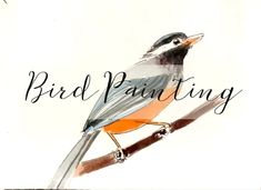 Video of a bird painting in watercolor
