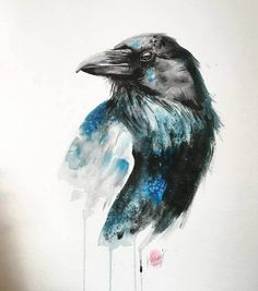The Raven, Raven Art, Watercolor Bird, Watercolor Animals, Watercolor Paintings, Watercolour Tattoos, Black Crow Tattoos, Fox Tattoos, Tree Tattoos