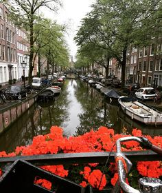Amsterdam is gorgeous in summer. Would you like to get a personalized guide for your travels? Check out our bio! . . . #travel #traveling #digitalnomads #beautiful  #nice #vacation #mustsee #instagood #instatravel #cool #instacool #amazing #awesome #best #great #travelguide #travelling #amsterdam #netherlands #holland #canals