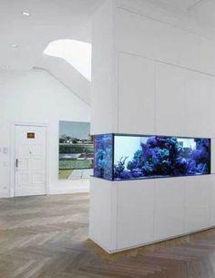 Aquarium Design, Home Aquarium, Aquarium Fish Tank, Fish Tanks, Aquarium In Wall, Fish Tank Terrarium, Aquarium Terrarium, Modern Fish Tank, Fish Tank Wall
