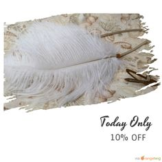 Today Only! 10% OFF this item.  Follow us on Pinterest to be the first to see our exciting Daily Deals. Today's Product: White ostrich feather hair clips bohemian hair extension native American Indian hair accessory Buy now: https://www.etsy.com/listing/242012936?utm_source=Pinterest&utm_medium=Orangetwig_Marketing&utm_campaign=Summer_sale   #etsy #etsyseller #etsyshop #etsylove #etsyfinds #etsygifts #musthave #loveit #instacool #shop #shopping #onlineshopping #instashop #instagood…