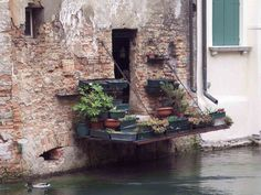 Canal Flower Garden, Venice, Italy   photo by Sergio Vaian