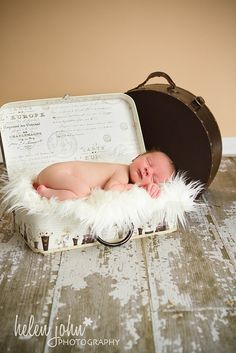 newborn in suitcase with fur
