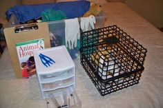 (pretend) Animal Hospital --Suggested items: Stuffed animals, leashes, bowls, dog biscuits, scrubs, latex gloves, bandages, syringes, tweezers, cotton balls, play doctor's kits, clip boards, cages made by attaching two baskets (from a dollar store) with binder rings (The baskets can be detached and stacked for storage), pet posters, real brochures from an animal clinic.