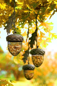 Acorn Bird Feeders - These nature-inspired bird feeders are made from sturdy iron and aluminum with an aged bronze finish and will look perfect hanging from any tree.