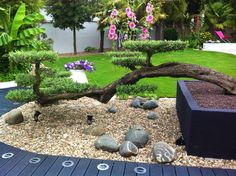 "Résultat de recherche d'images pour ""deco jardin zen interieur"" Stepping Stones, Images, Patio, Outdoor Decor, Plants, Design, Home Decor, Japanese, Google"