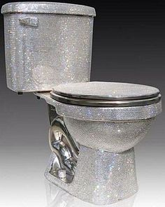 Now we can poop in style