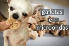 hacer galletas para perros microondas