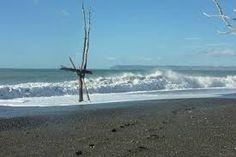 Image result for the beach house rarangi beach marlborough airbnb