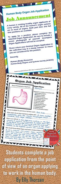 Students show what they know about organs and organ systems when they complete a job application for an organ applying to work in the human body. A Spanish version is included.
