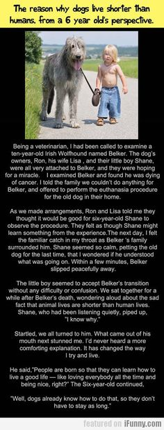 The Reason Why Dogs Live Shorter Than Humans. Made me cry