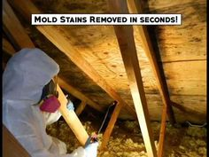 Mmr Mold Stain Remover Products Pinterest Crawl