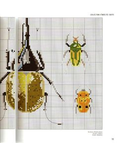 Gallery.ru / Фото #23 - MARABOUT Insects - tatasha