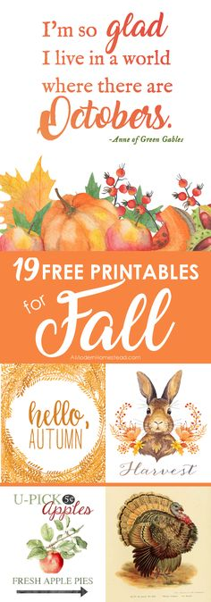 Fall Decor - 22 Printable Fall Art Pieces for FREE! Fall is a time of rich colors, warm drinks, and cool weather. It greets us with a gentle breeze and a promise of calm times to come. Celebrate with these free fall printables for the homestead! Autumn Crafts, Autumn Art, Thanksgiving Crafts, Holiday Crafts, Holiday Decor, Printable Art, Free Printables, Preschool Printables, Printable Quotes