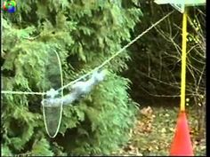 What happens: A squirrel completes an obstacle course. The video is set to the high-adventure theme song of Mission: Impossible . At the end, the squirrel gets a nut. | Top 12 Funniest Videos Of 2013