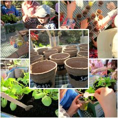 herb planting pots - gardening party..cute banner