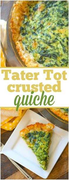 You have got to try this tater tot crusted spinach quiche! Filled with any egg mixture this tater tot quiche is sure to please everyone at breakfast or a brunch. via @thetypicalmom