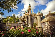 The Disneyland Bucket List: 40 Things You Need to Do Before You Die